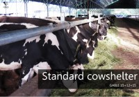 Cow shelter - new