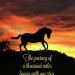 horse-inspirational-motivational-lao-tzu-famous-quotes-stephanie-laird